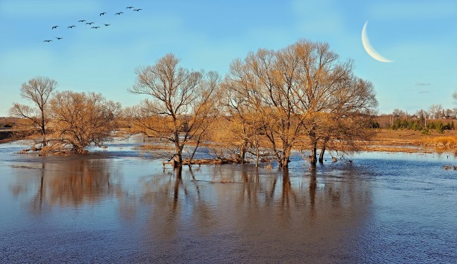Половодье на реке Каменка